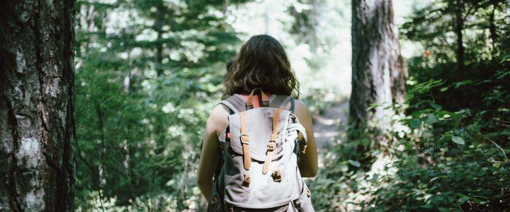 Top Five Hikes in Blue Ridge